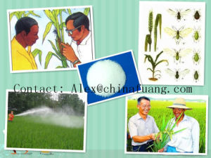 Agrochemicals Insect Control Insecticide (CAS: 66215-27-8) Technical 95% Cyromazine pictures & photos