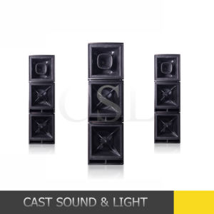 Professional Audio Bass Low Pitch Remote Woofer Speaker pictures & photos