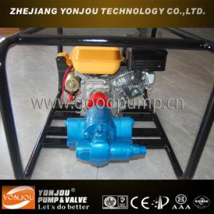 Vegetable Oil Pump, Heavy Fuel Oil Pump, Rotary Gear Pump, Gear Oil Pump pictures & photos