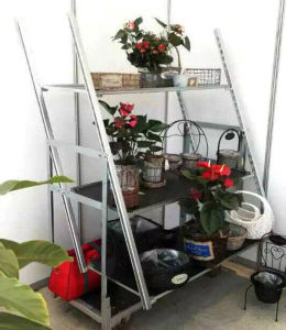 Multi Layers Flower Trolley/Cart pictures & photos