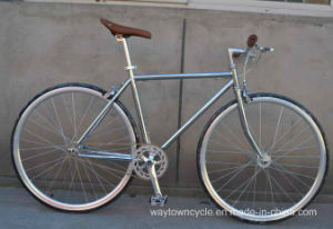 Fixed Bike (WT-2717) pictures & photos