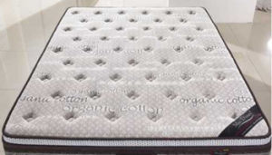 Hm160 Hot Sale Rollable Memory Foam Mattress/Thin Mattress pictures & photos
