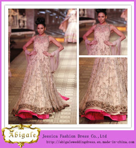 a-Line Embroidery Jewel See Through Beaded Indian Celebrity Dresses (SR68)