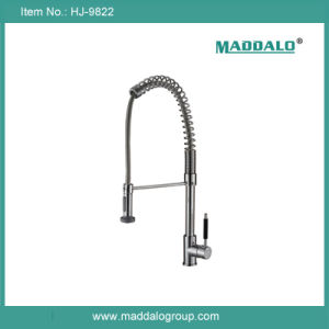 China Top Quality Luxury America Style Brass Flexible Kitchen Faucet (HJ-9822)