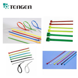 UL Approved 94V-2 Self Locking Nylon Cable Ties pictures & photos