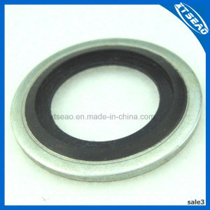 Rubber Self-Centring Bonded Washer Gasket pictures & photos
