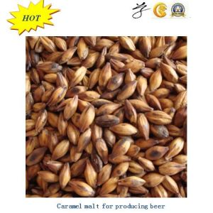 Chinese Wheat Malt for Producing Beer pictures & photos