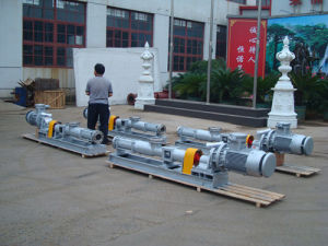 G70-1 Single Screw Pump for Sewage pictures & photos