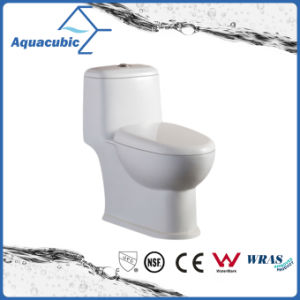 Siphonic One Piece Dual Flush Ceramic White Toilet (ACT8823) pictures & photos
