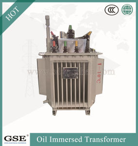S13-Mr-L 30-2500 kVA Three-Phase Oil-Immersed Fully-Sealed Power/Distribution Transformer pictures & photos