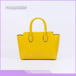 Hot Selling Good Quality Elegant Ladies Handbag (DX-HAG2897)
