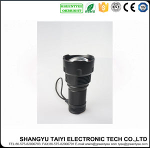 5W CREE LED Torch Outdoor Light Aluminum Flashlight pictures & photos