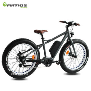 26′′ 48V 1000W Hidden Battery MID Drive Motor Electric Bike pictures & photos