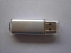 Promotion Gifts Plastic USB Flash Drives USB 2.0 (OM-P161) pictures & photos