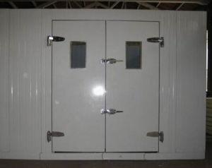 Walk-in Freezer/Refrigerating Doors/Cold Room Door pictures & photos