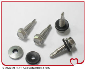 Hex Washer Head Self Tapping Screw and Self Drilling Screws pictures & photos