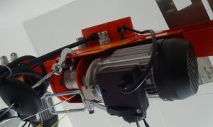 Popular Hoist with Ce Certificate pictures & photos