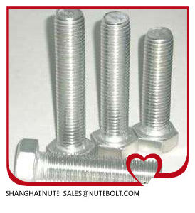 Hex Bolt Stainless Steel 304 316 pictures & photos