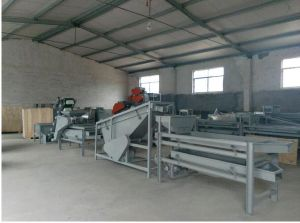 200-300kg/H Hard Shell Almond Shelling Machine pictures & photos