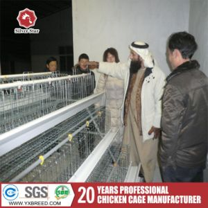 Cheap Farm Machinery Bird Cage Chicken Cage for Sale pictures & photos