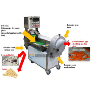 Multifunction Vegetable Cutter/ Potato Slicer/ Carrot Cutting Slicing Machine pictures & photos