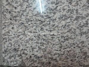 Chinese Granite Tiger Skin White Granite Slab pictures & photos