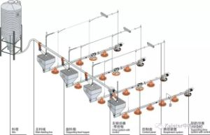 Automatic Feeding Line for Broiler Chicken pictures & photos