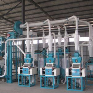 10tpd Popular Factory Supplier Maize Mill Plant pictures & photos