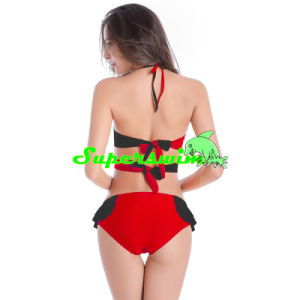 Double Color Bikini for Lady pictures & photos