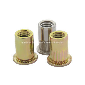 Carbon Steel Rivet Nut Flat Head/Countersunk Head/Hex Head /Reduced Head pictures & photos
