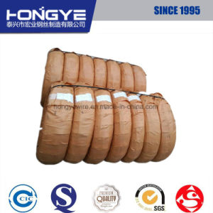 JIS G 3521 Steel Coil Spring Wire pictures & photos