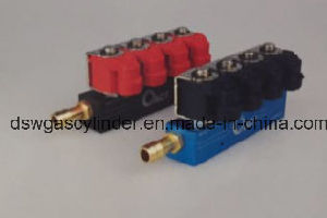 OEM Injector Rails pictures & photos