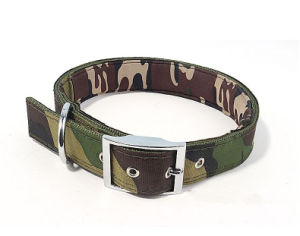 Pet Dog Cat Camouflage Collar (c001) pictures & photos