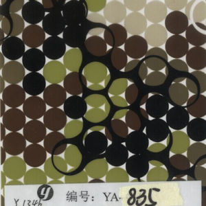 Tsautop 0.5/1m Width Hydro Dipping Film Hydrographics Film pictures & photos