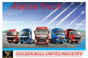 Auman Truck Parts pictures & photos