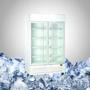 Double Door Freezer for Ice Cream pictures & photos
