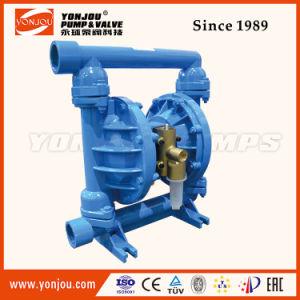 Qby Cast Iron Diaphragm Pump with Teflon Diaphragms pictures & photos