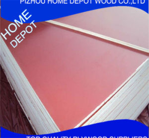 Hot Sale Good Quality Poplar/Pine/Hard Woodfilm Faced Plywdood pictures & photos