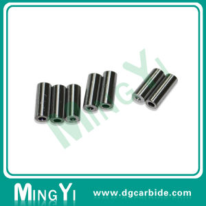 Automatic Greasing Systems Plastic Hinges Hl091-1 DIN 9861d pictures & photos