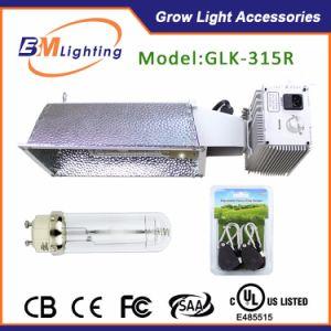 CMH 315W HPS Lamp Metal Halide Lighting Ballast pictures & photos