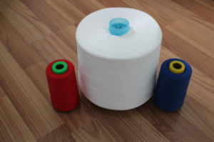 Raw Pattern 20s 20/1 20/2 20/3 Spun Polyester Sewing Thread pictures & photos