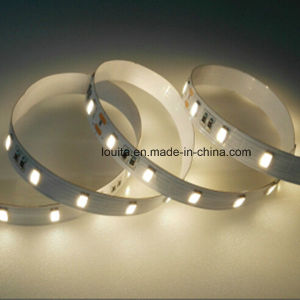 60LEDs/M 5630 LED Flexible Strip Light pictures & photos