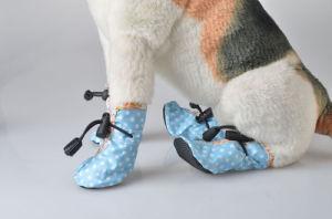 Canvas Leisure Pet Products Pet Shoes Pet Supply pictures & photos