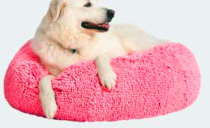 Coral Velvet Pink Dog Bed, Pet Cushion pictures & photos