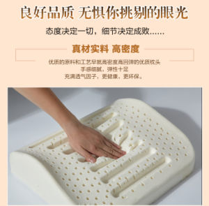 Natural Latex Massage Back Cushion pictures & photos