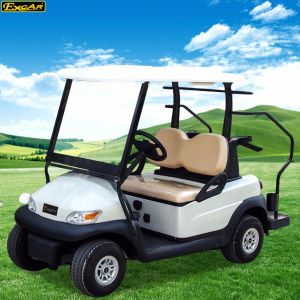 Popular China Cheap Electric Golf Car with 2 Seaters pictures & photos
