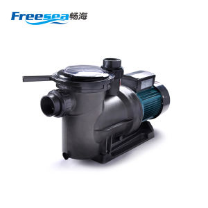 High Efficient Circulation Electric Water Treatment Pump with Port Size 63mm pictures & photos