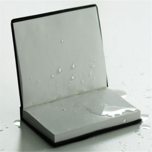 Hot Selling Waterproof Tear Resistance Rock Paper pictures & photos