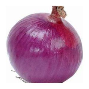 Onion Extract Spiraeoside 10%~30%, Polyphenol 30% pictures & photos