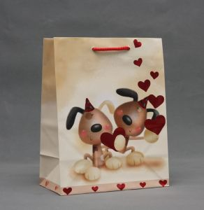 Customer Shopping Bag Foldable with Good Service pictures & photos